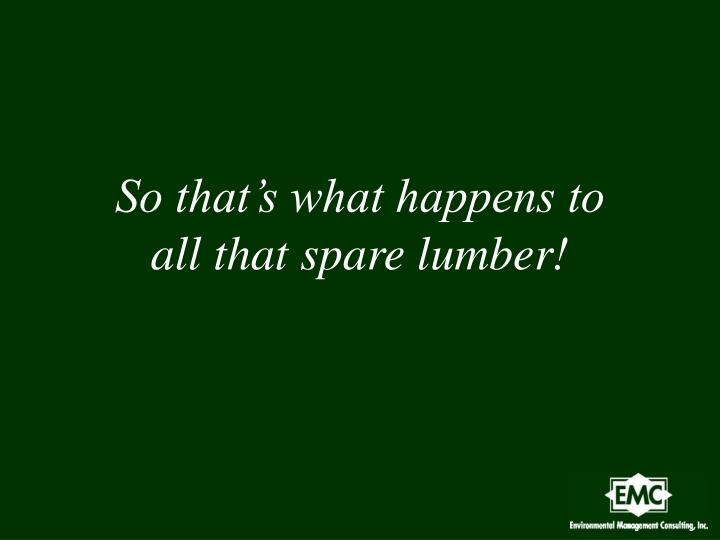 So that's what happens to all that spare lumber!