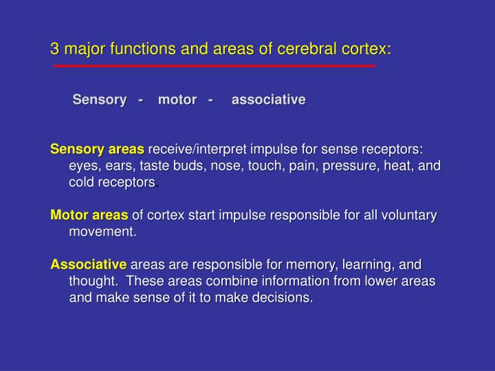 3 major functions and areas of cerebral cortex:
