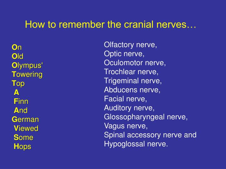 How to remember the cranial nerves…