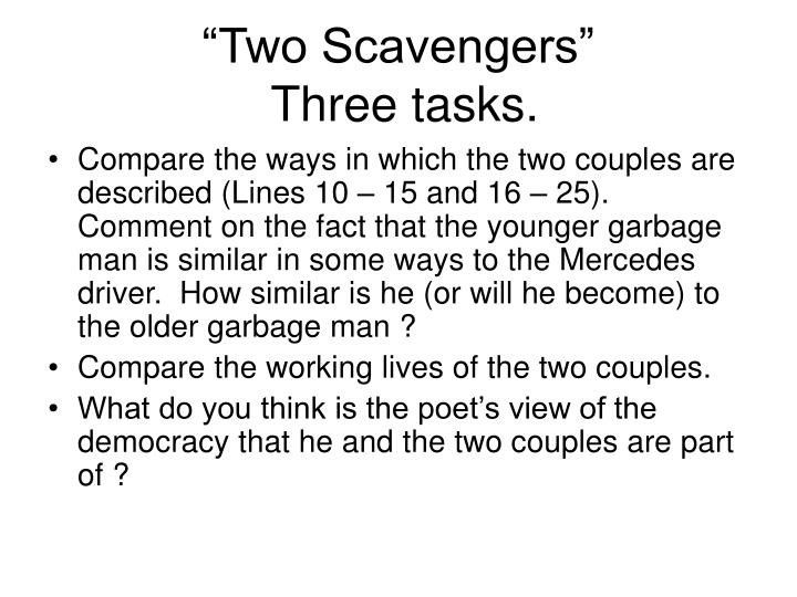 """Two Scavengers"""