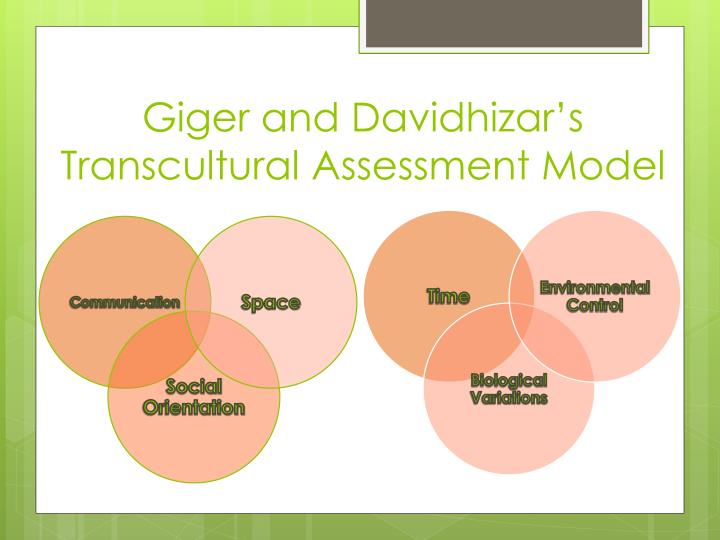 giger and davidhizar model