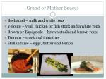 grand or mother sauces