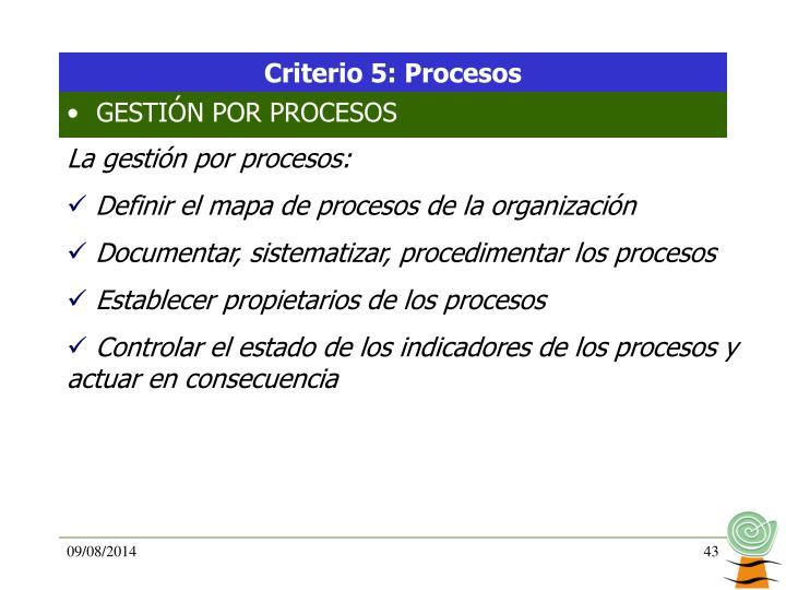Criterio 5: Procesos