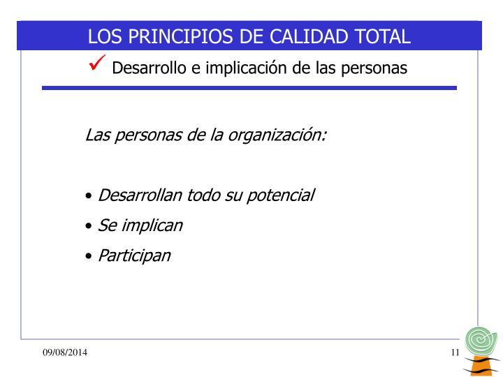 LOS PRINCIPIOS DE CALIDAD TOTAL