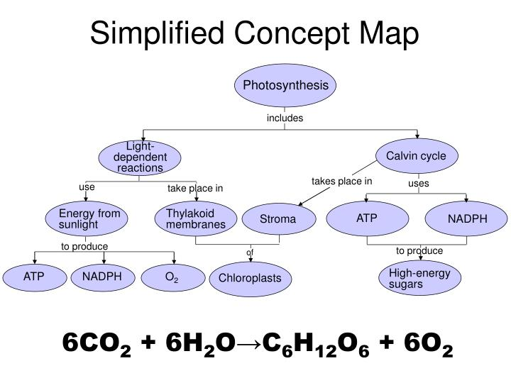 Ppt Simplified Concept Map Powerpoint Presentation Free