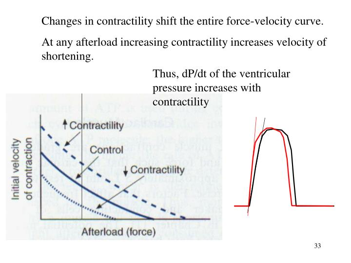 Thus, dP/dt of the ventricular pressure increases with contractility