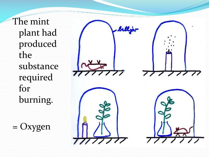 The mint plant had produced the substance required for burning.