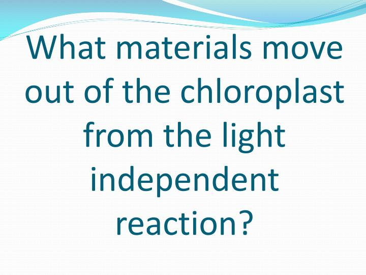 What materials move out of the chloroplast from the