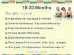 18 20 months4
