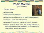 25 30 months 2 2 years7