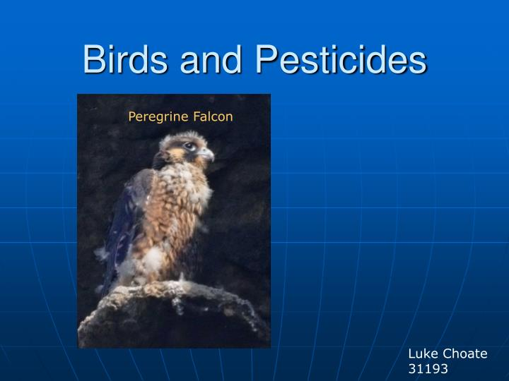birds and pesticides n.