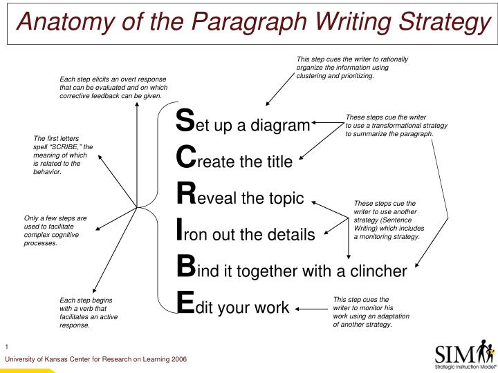 anatomy of the paragraph writing strategy n.