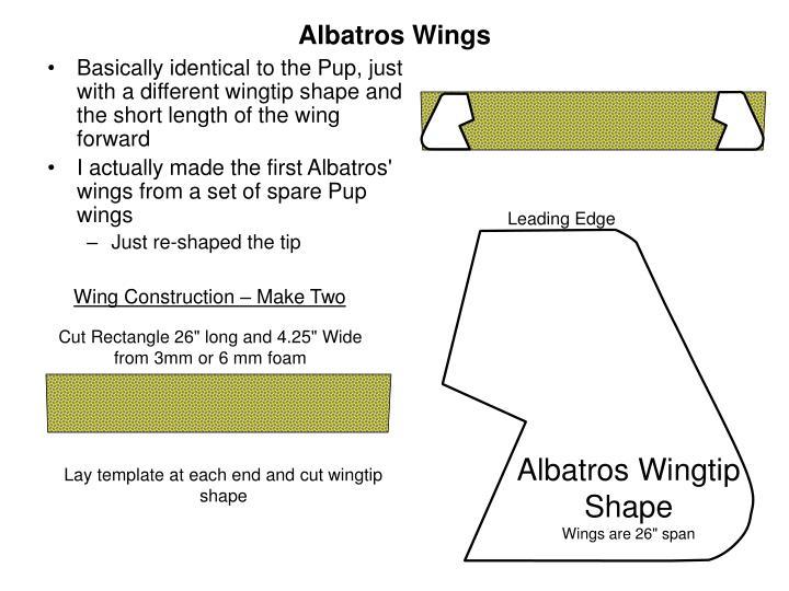 Albatros Wings