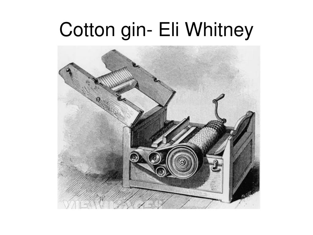 ppt cotton gin eli whitney powerpoint presentation id 3097413