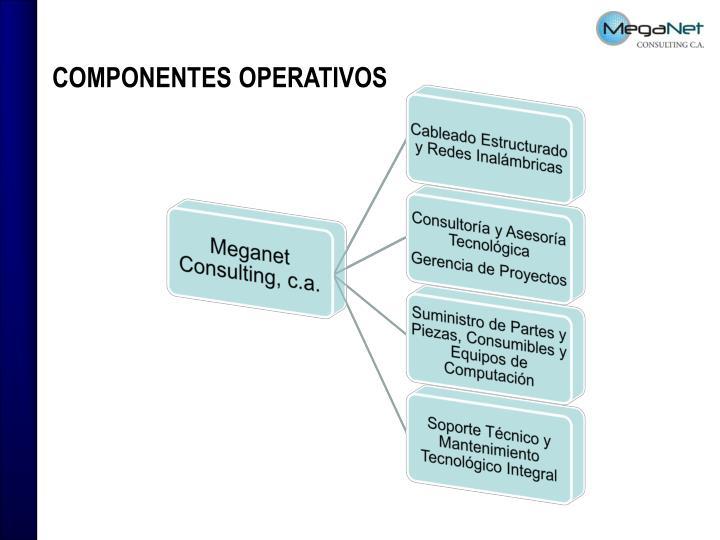COMPONENTES OPERATIVOS
