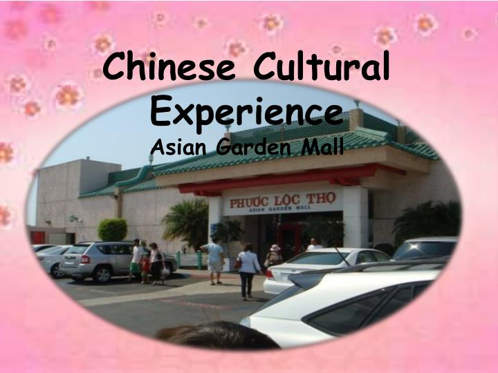 Chinese Cultural Experience