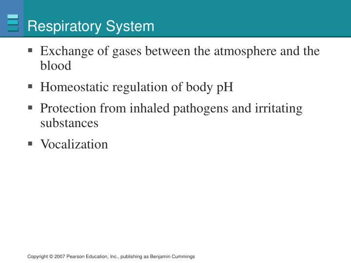 Respiratory system1