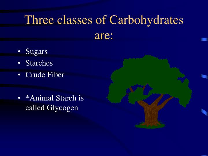 Three classes of Carbohydrates are: