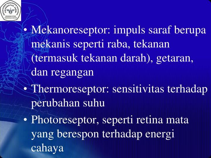 Mekanoreseptor: impuls saraf berupa mekanis seperti raba, tekanan (termasuk tekanan darah), getaran, dan regangan