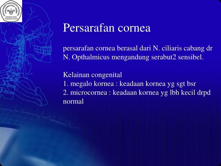 Persarafan cornea