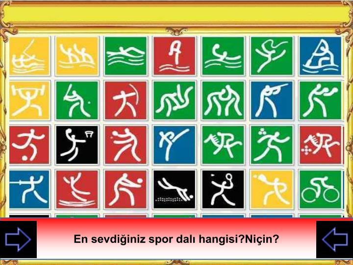 En sevdiğiniz spor dalı hangisi?Niçin?