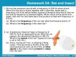 homework 5a bat and insect