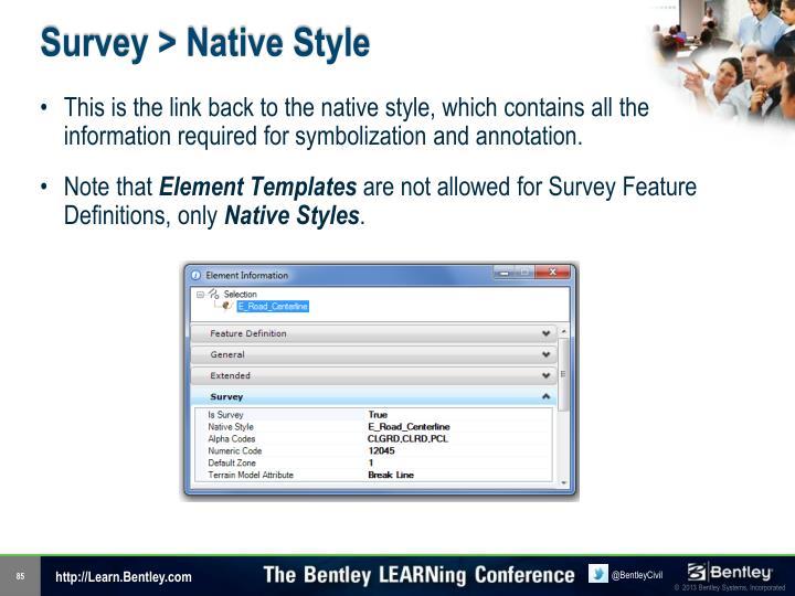 Survey > Native Style
