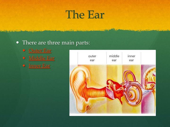 The ear1