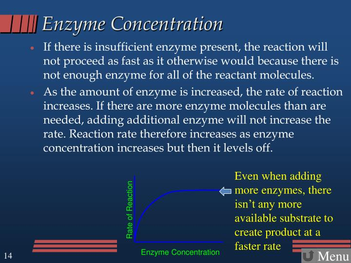 Enzyme Concentration