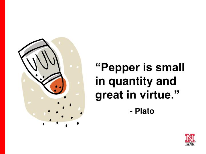 """""""Pepper is small in quantity and great in virtue."""""""