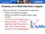 anatomy of a cnas bachelor s degree2