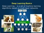 deep learning basics1