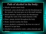 path of alcohol in the body