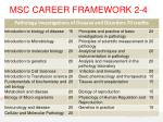 msc career framework 2 42
