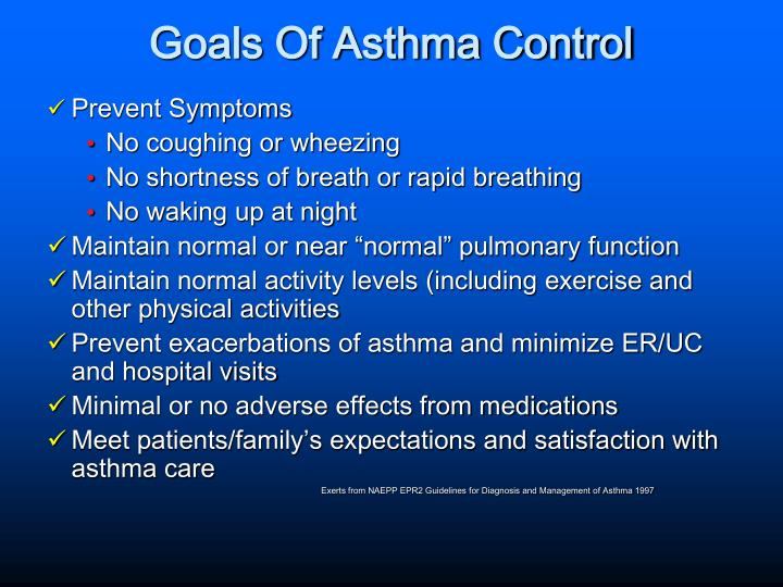 Asthma Symptoms And Preventions Essay  Essay Academic Service  Asthma Symptoms And Preventions Essay