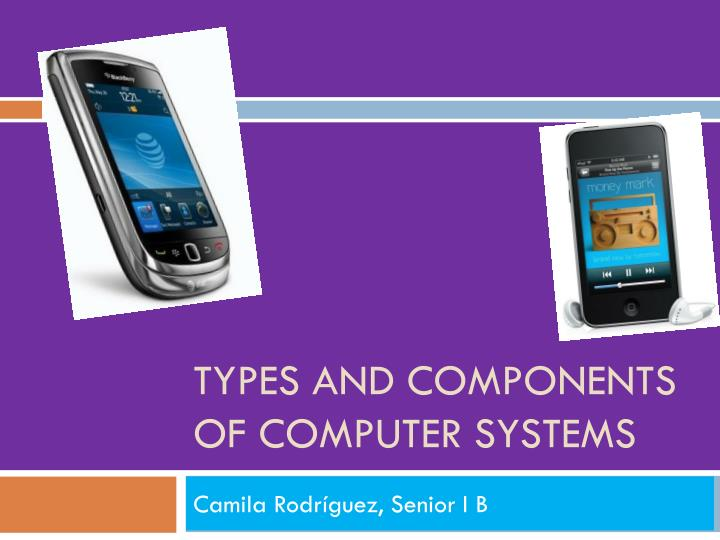 types and components of computer systems n.