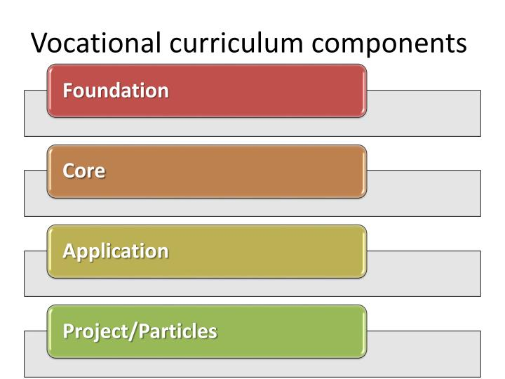 Vocational curriculum components