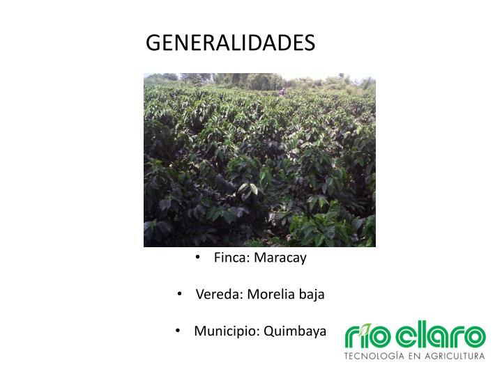 Generalidades