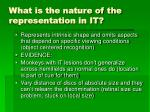 what is the nature of the representation in it