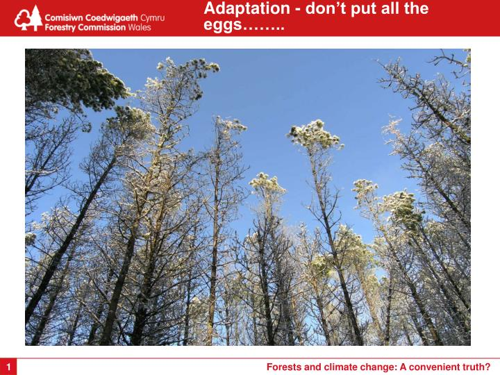 Adaptation - don't put all the eggs……..
