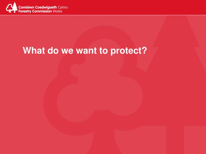 What do we want to protect?