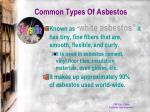 common types of asbestos1