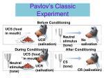 pavlov s classic experiment