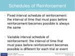 schedules of reinforcement2
