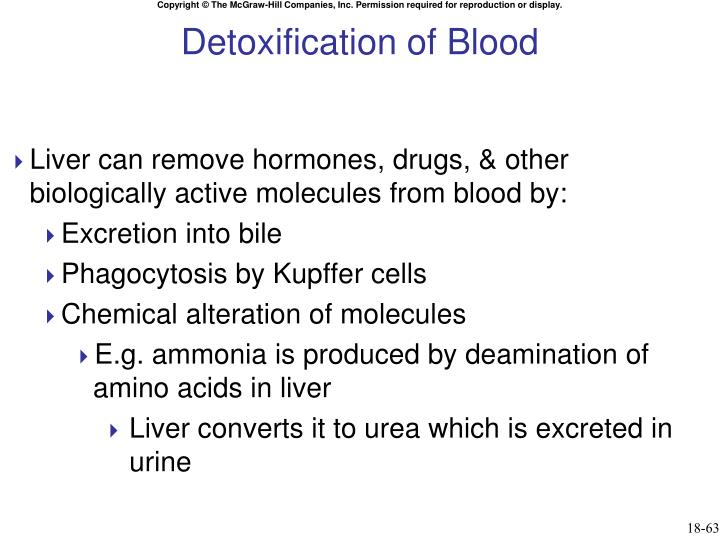 Detoxification of Blood