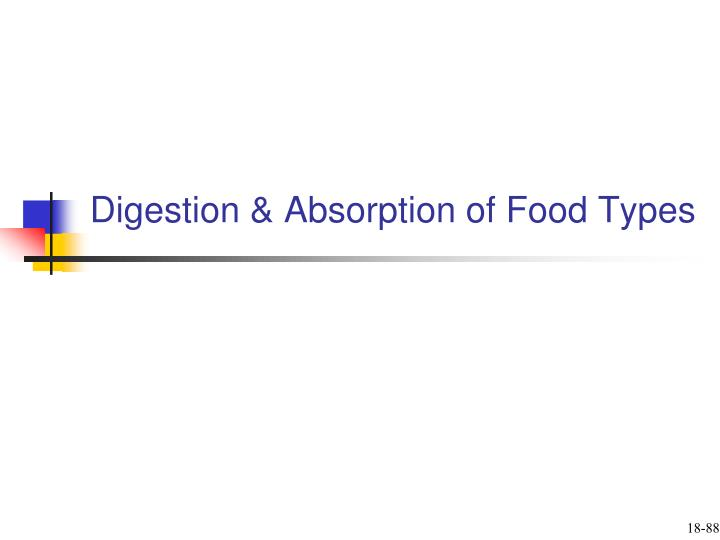 Digestion & Absorption of Food Types
