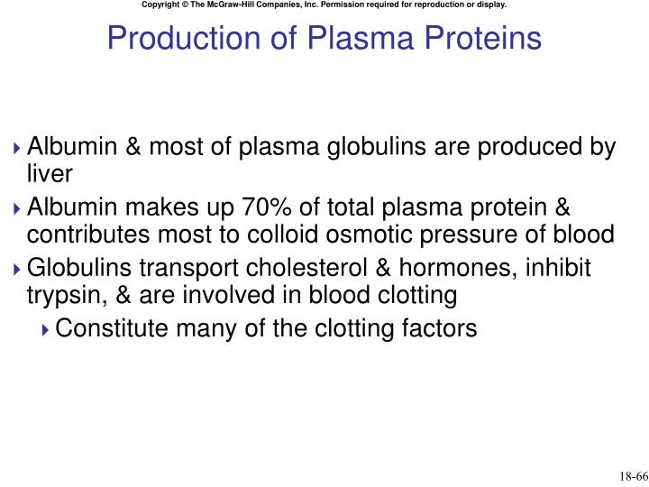 Production of Plasma Proteins