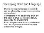 developing brain and language