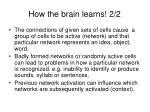 how the brain learns 2 2