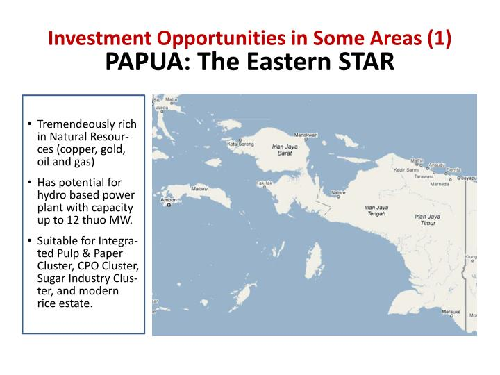 Investment Opportunities in Some Areas (1)
